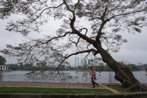 Bay Mau Lake in Hanoi