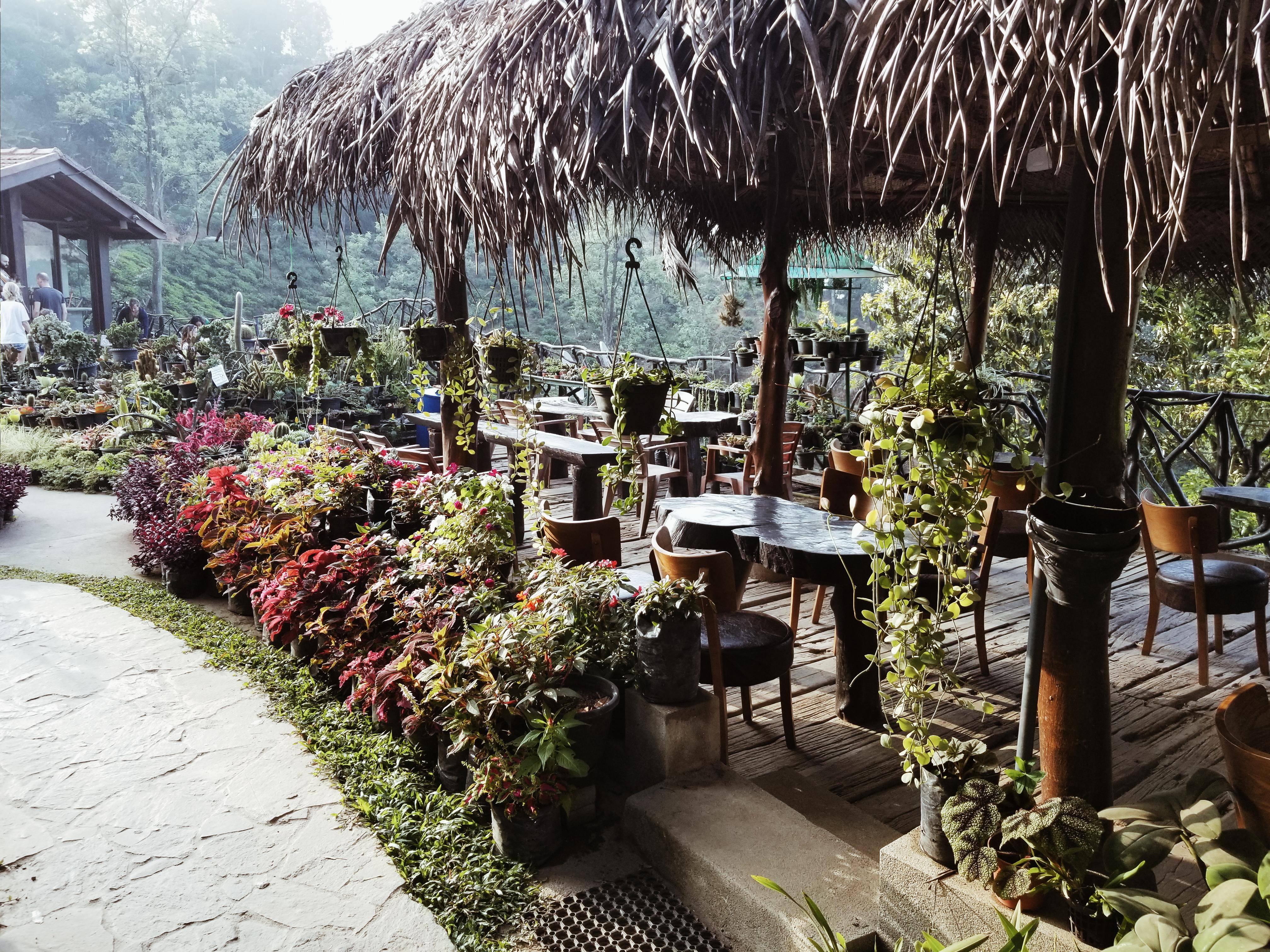 In the hotel garden